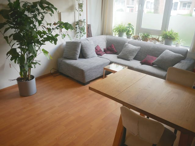 Beautiful appartment in Delft