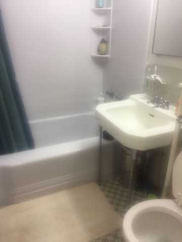 One bedroom in Bronx oasis, Fordham Hill Oval. - Bronx - Byt