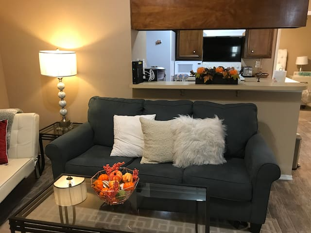 Cozy home near AT&T Stadium, Epic Indoor Waterpark