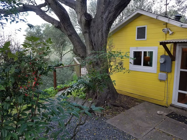 QUIET HILLTOP COTTAGE, AMAZING WATER VIEWS - El Sobrante - Dom