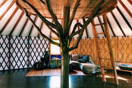 Mango Tree - Pāhoa - Trädhus