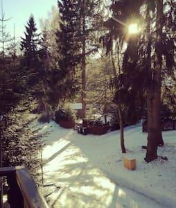 Kameralny,słoneczny apartament - Szklarska Poręba