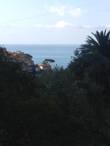 Charming cottage with sea view - Zoagli - Cabaña