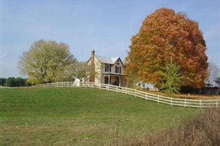Southern Comfort (Private Suite) - Lexington - Casa