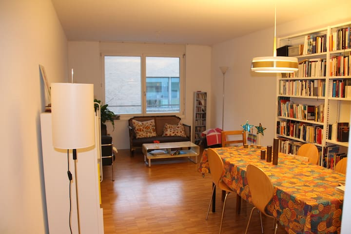 Quiet, sunny appartment in the heart of Kleinbasel - Basel - Flat