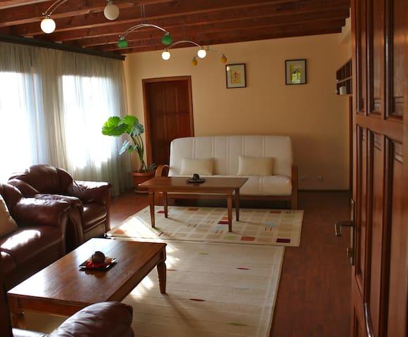 Spacious Apartment in Prishtina - Prishtina - Hus