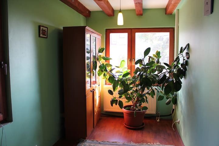 Green bedroom, small but cozy!