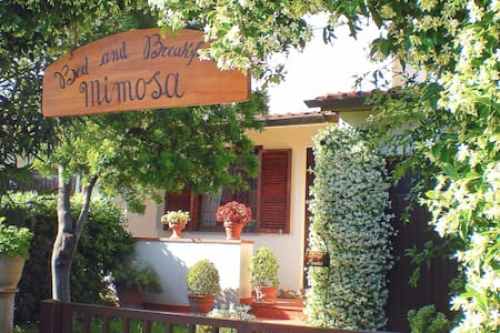 Bed and Breakfast Mimosa - Cascina - 家庭式旅館