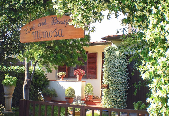 Bed and Breakfast Mimosa