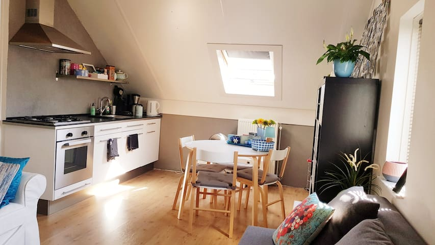 Big Private Apartment near Amsterdam up to 4 guest