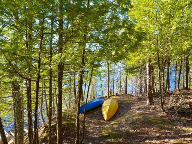 2 kayaks & canoe available for guests