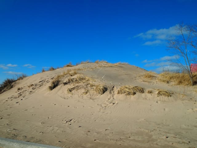 World famous sand dunes and beaches.