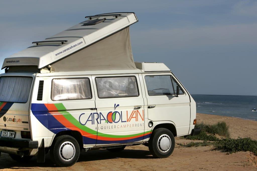 Toda la costa de Cádiz será tu jardín / The entire coast of Cadiz will your garden