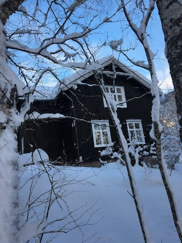 Charming, cozy cabin in the heart of Telemark.