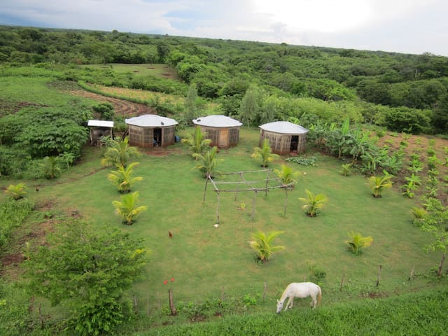 Ecofarm and Waterfall near Managua