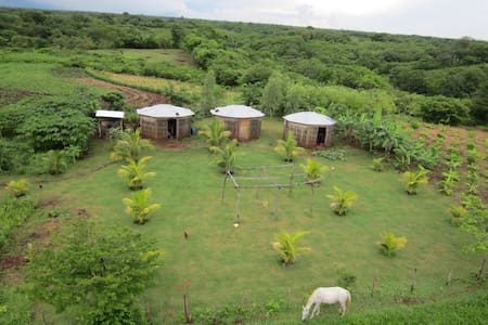 EcoFarm with Waterfall - Bed & Breakfast