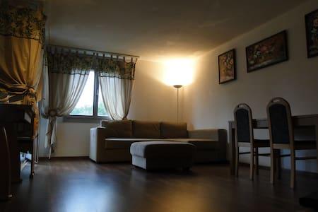 3.5 room Apartment in Villmergen - Villmergen - Apartament