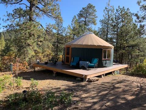 Yellow Jacket Yurt