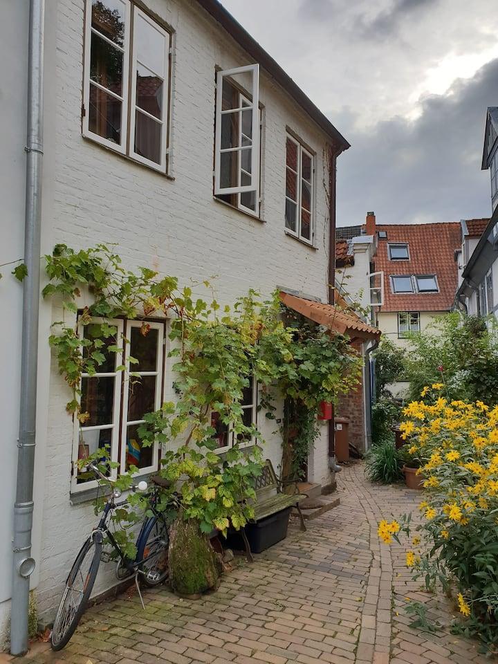 Historisches Altstadthaus im Domviertel