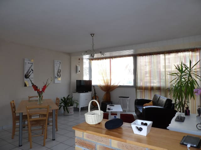 Appartement 30 min à du Puy du Fou - Cholet - Apartment