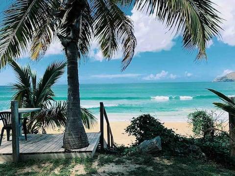 GreenLeafOasis #1 | Turquoise Ocean Views