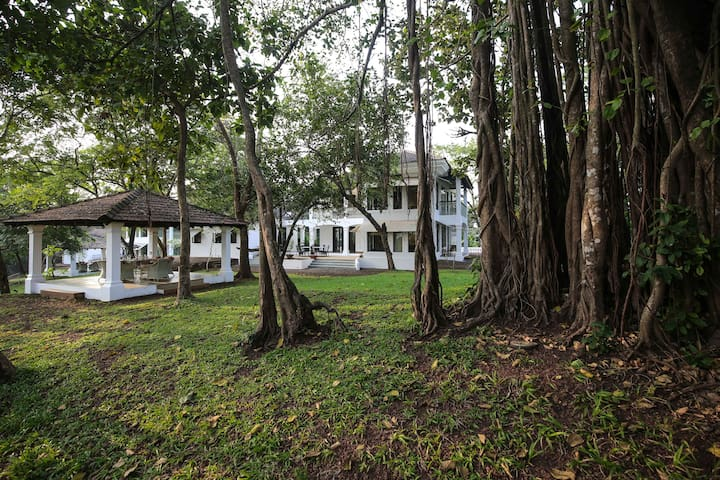 """Teak"" Luxury 3 BR villa at Champakali Old Goa"