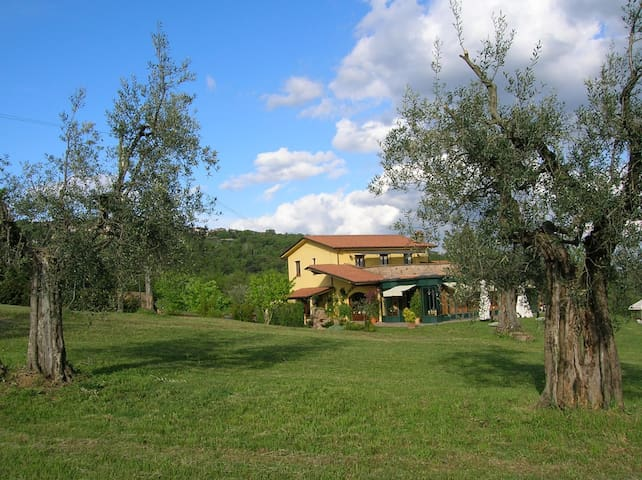 The best rooms on Tuscany Hills - Castel Rigone - Bed & Breakfast