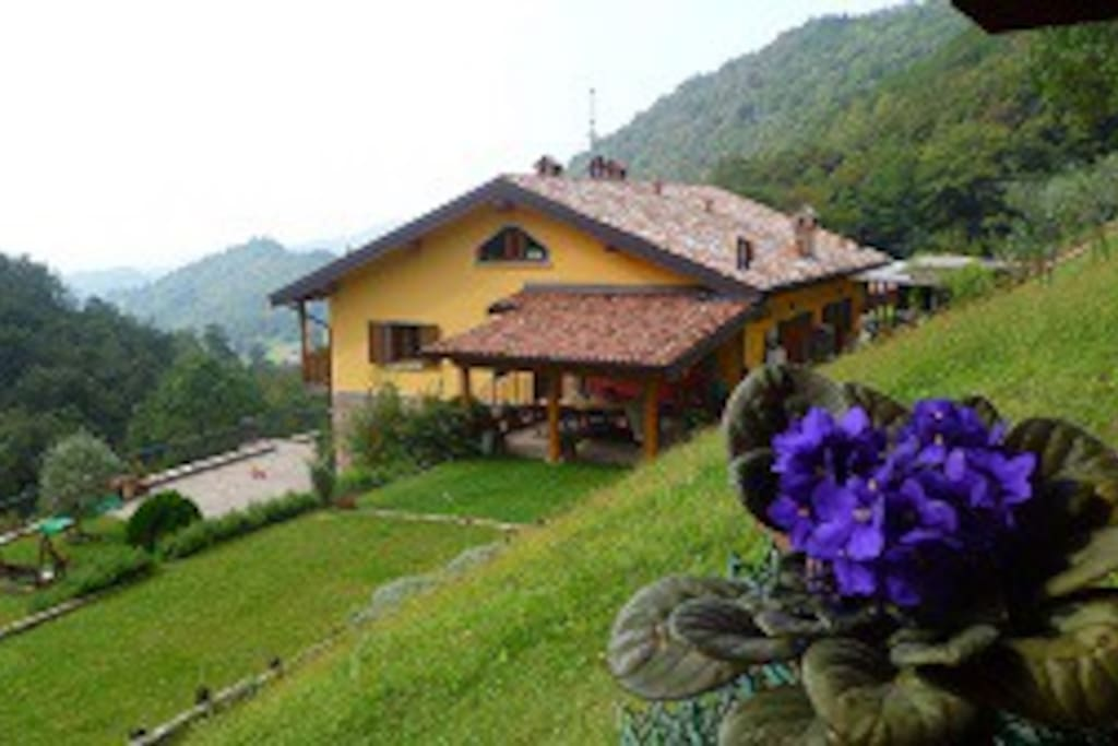 My home in the wood houses for rent in casco for Rent a home in italy