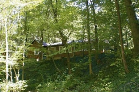 Two acres of wooded serenity - Sawyer - Haus