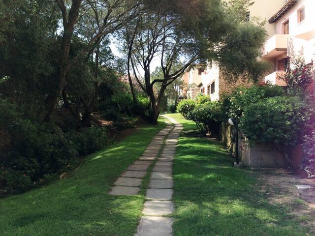 viale giardino