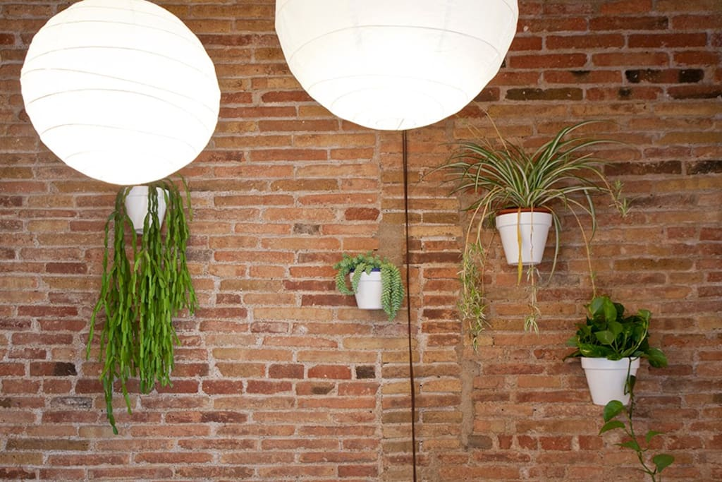 Planters and paper lanterns in the dining area