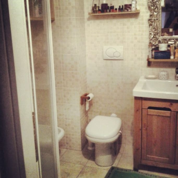 bathroom with shower and toilette