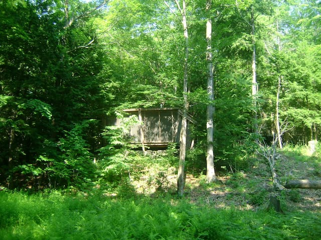 Rustic Cabin on the Poetic Creek