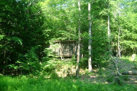 Rustic Cabin on the Poetic Creek - 卡茨基爾(Catskill) - 小屋