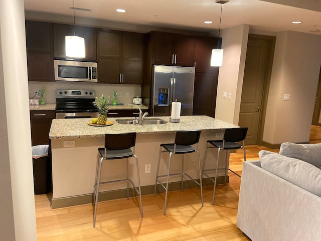 Central Downtown dallas  luxury penthouse apts