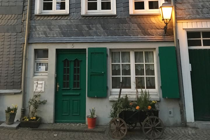 Cosy Flat in Mettmann - Good Link to Duesseldorf