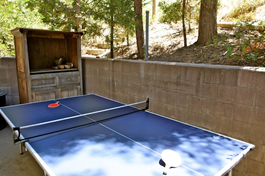 Tournament style outdoor ping pong table