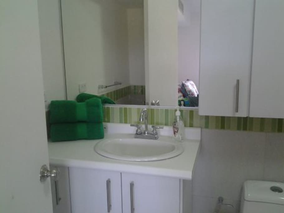 The master bedroom´s bathroom