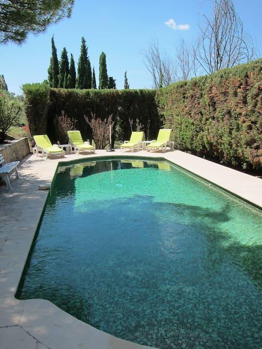 Très belle piscine aux mosaïques vertes.