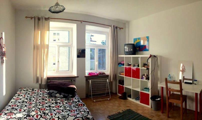 Cozy room for Winter in Salzburg - Salisburgo - Appartamento