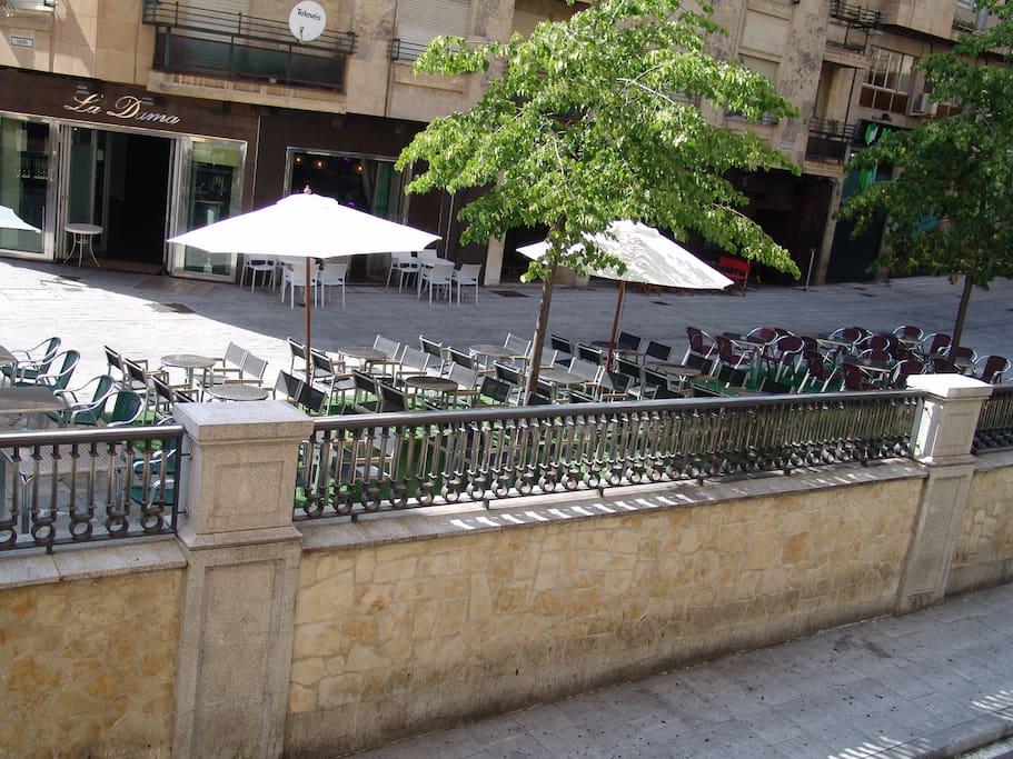 Plaza de la Reina a 100 m de la Plaza Mayor, en pleno centro de Salamanca
