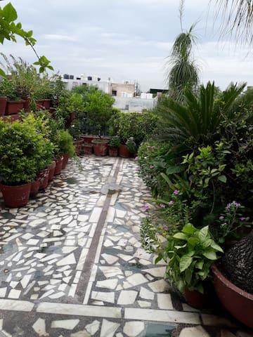 Cozy room in Delhi with attached terrace garden.