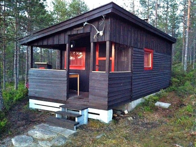 Enkel hytte i skogen