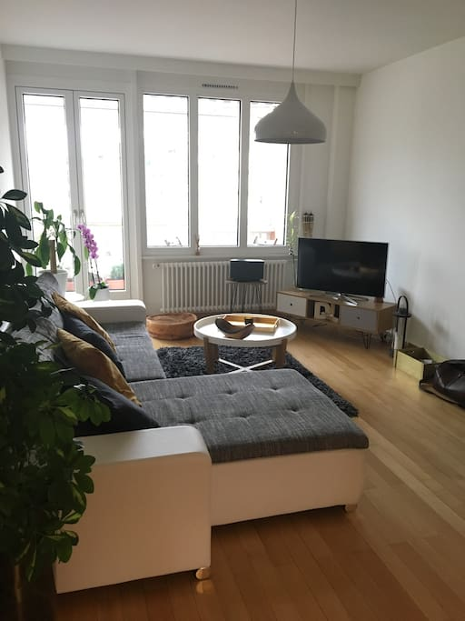 Living Room - possibility to open sofa to have extra Queen Bed