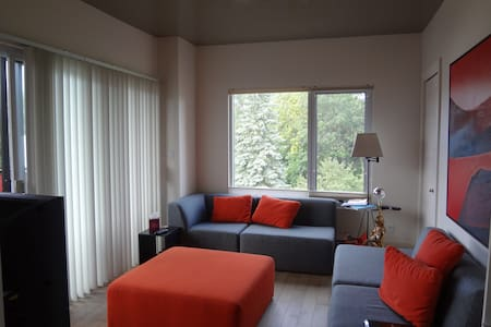 Couch 2 steps from Metro Cartier - Laval - Oda + Kahvaltı