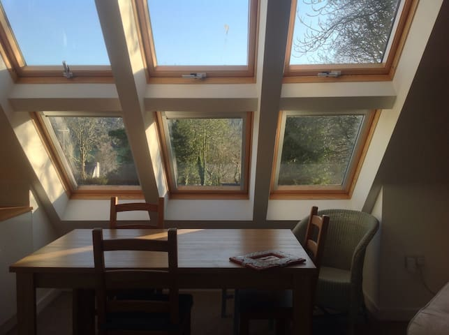 Light, airy self-contained annexe - Hilton, Blandford Forum - House