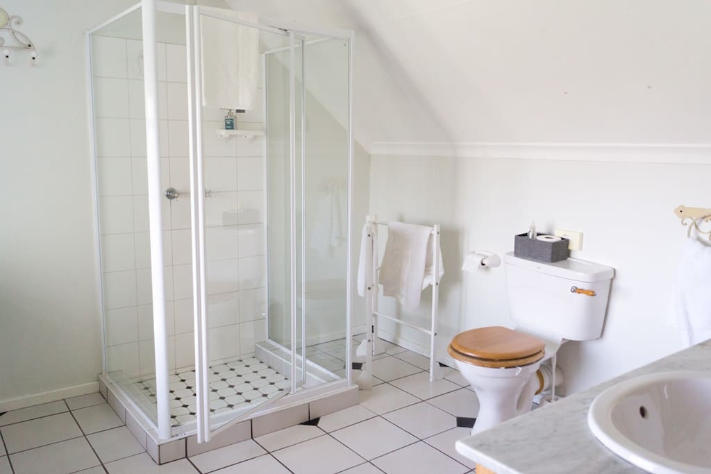 South Room- bathroom
