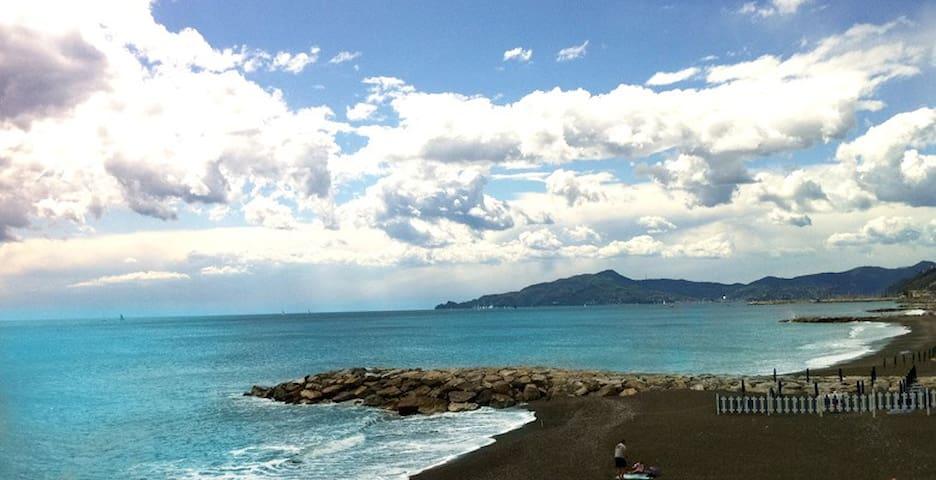 Lavagna tra Portofino 5terre (citra010028-LT-0240)