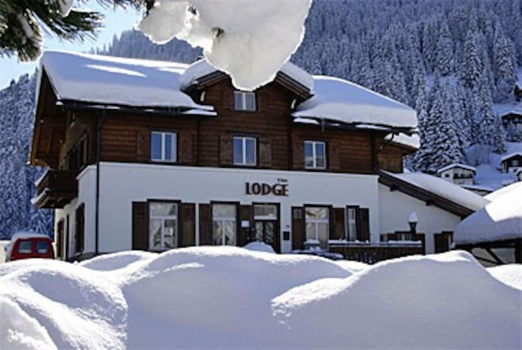 Lodge Winter Snow sure
