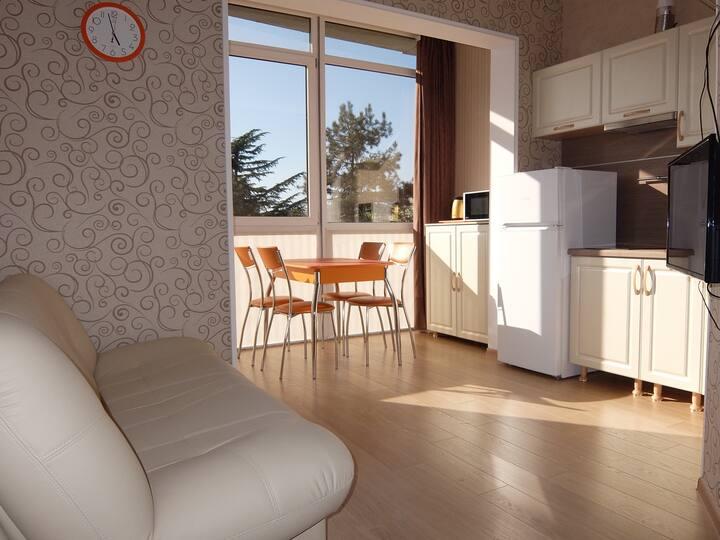 Уютная студия на Войкова в стиле прованс